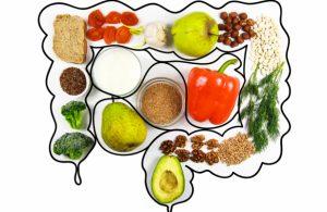 Read more about the article بهترین غذاها جهت بهبود هضم کدامند؟